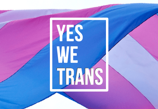 yes we trans